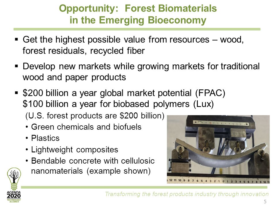 Transforming the forest products industry through innovation Opportunity: Forest Biomaterials in the Emerging Bioeconomy  Get the highest possible va