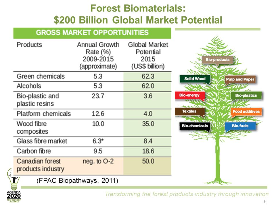 Transforming the forest products industry through innovation Forest Biomaterials: $200 Billion Global Market Potential (FPAC Biopathways, 2011) 6
