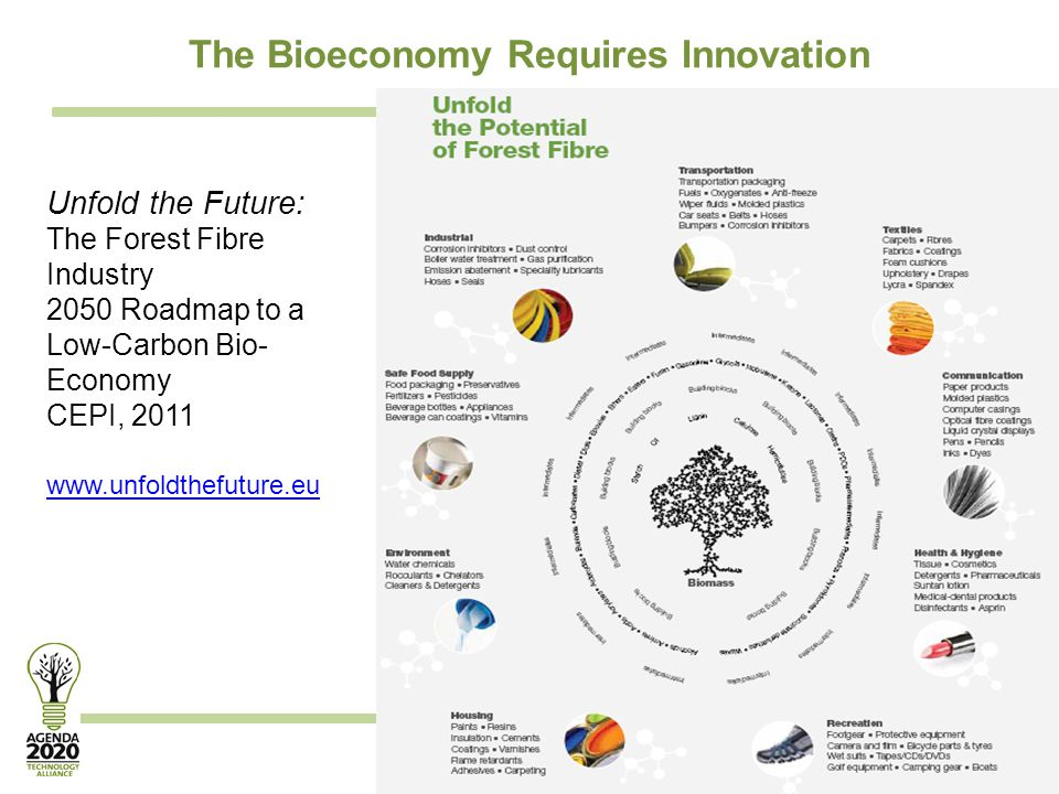 Transforming the forest products industry through innovation Unfold the Future: The Forest Fibre Industry 2050 Roadmap to a Low-Carbon Bio- Economy CE