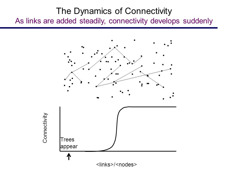 Trees appear Connectivity / The Dynamics of Connectivity As links are added steadily, connectivity develops suddenly