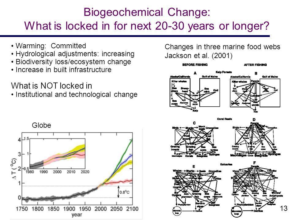 Biogeochemical Change: What is locked in for next 20-30 years or longer.
