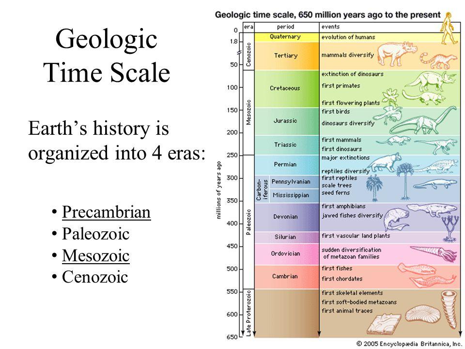 Geologic Time Scale Earth's history is organized into 4 eras: Precambrian Paleozoic Mesozoic Cenozoic