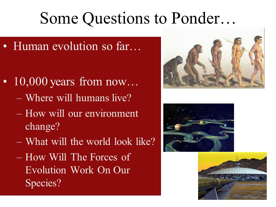 Some Questions to Ponder… Human evolution so far… 10,000 years from now… –Where will humans live? –How will our environment change? –What will the wor