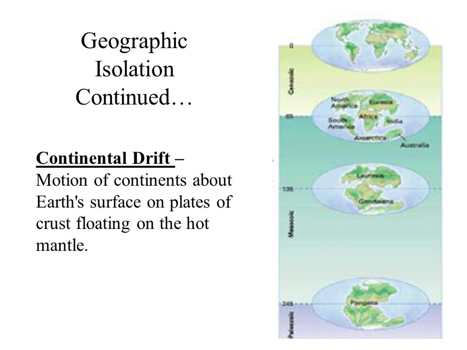 Continental Drift – Motion of continents about Earth's surface on plates of crust floating on the hot mantle. Geographic Isolation Continued…