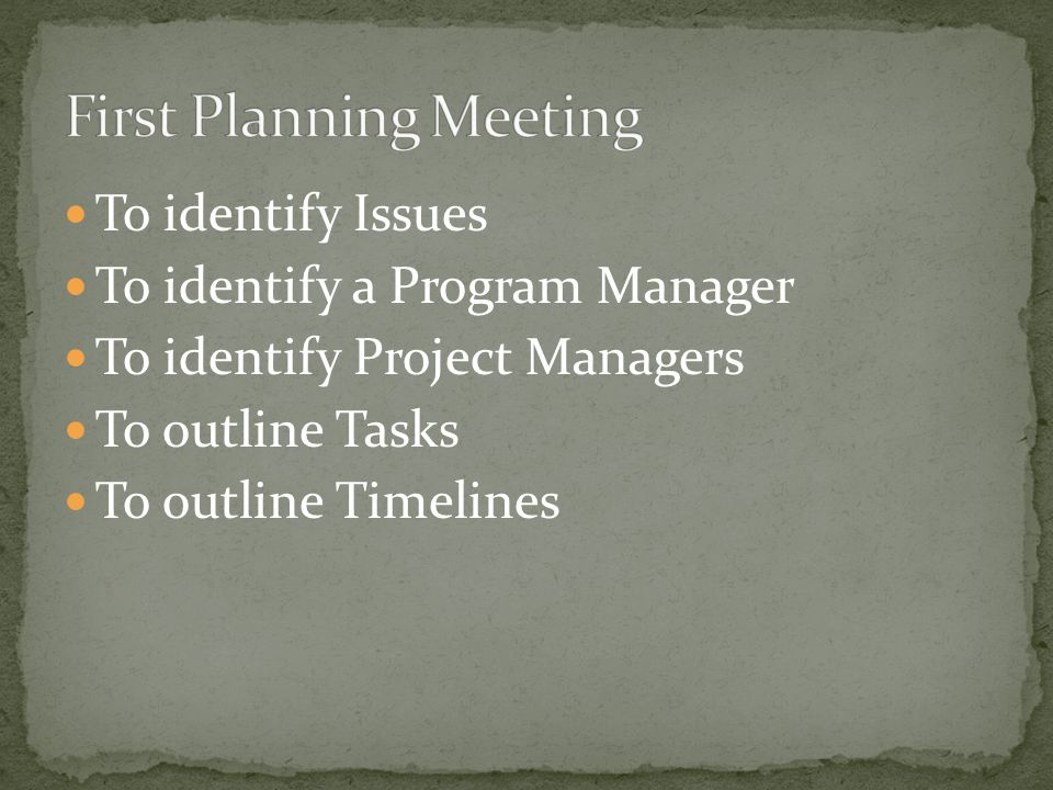 To identify Issues To identify a Program Manager To identify Project Managers To outline Tasks To outline Timelines