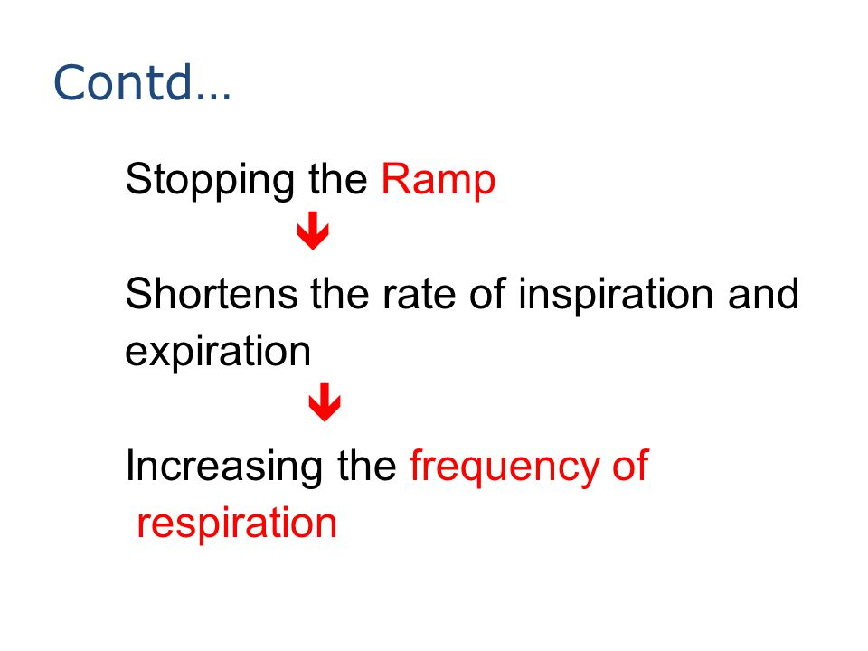 Contd… Stopping the Ramp  Shortens the rate of inspiration and expiration  Increasing the frequency of respiration
