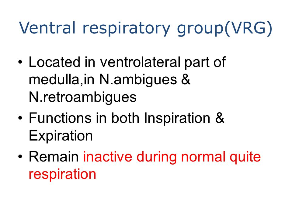 Ventral respiratory group(VRG) Located in ventrolateral part of medulla,in N.ambigues & N.retroambigues Functions in both Inspiration & Expiration Remain inactive during normal quite respiration