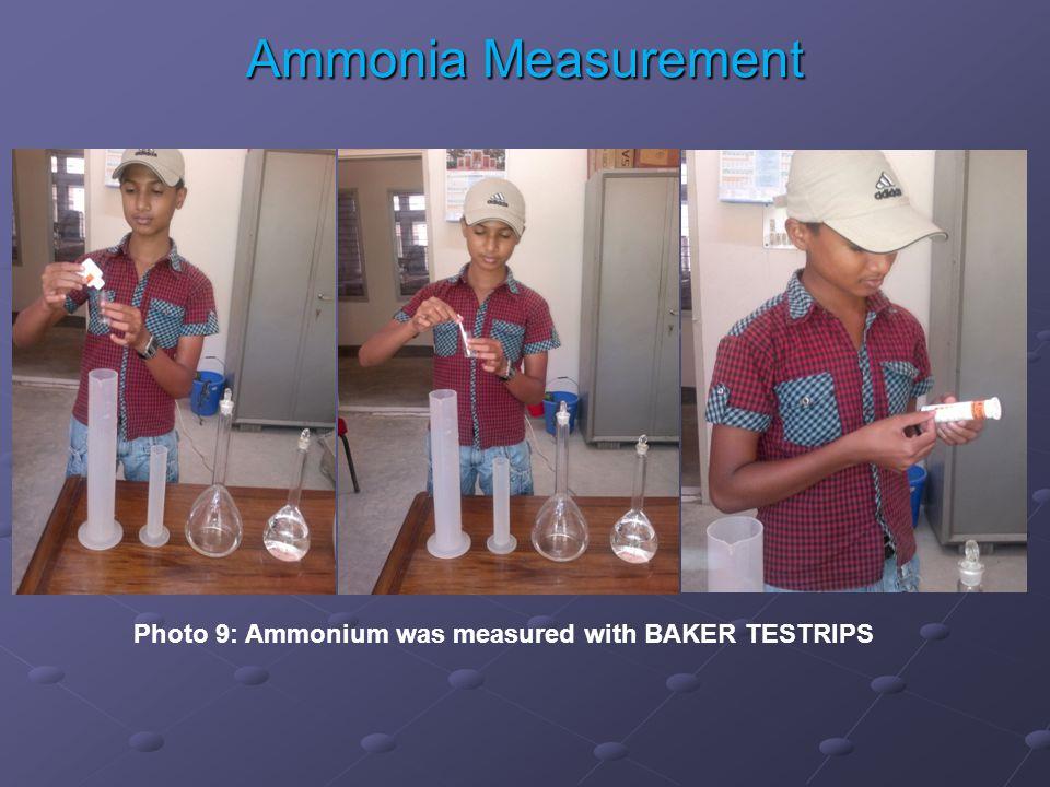 Photo 9: Ammonium was measured with BAKER TESTRIPS Ammonia Measurement