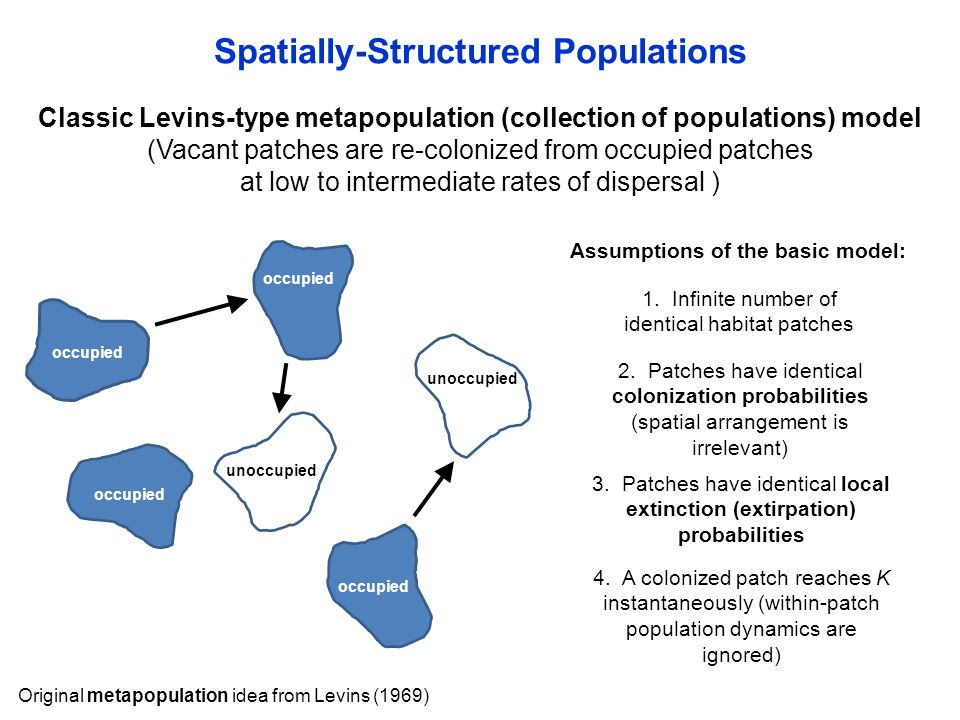 Spatially-Structured Populations Classic Levins-type metapopulation (collection of populations) model (Vacant patches are re-colonized from occupied p