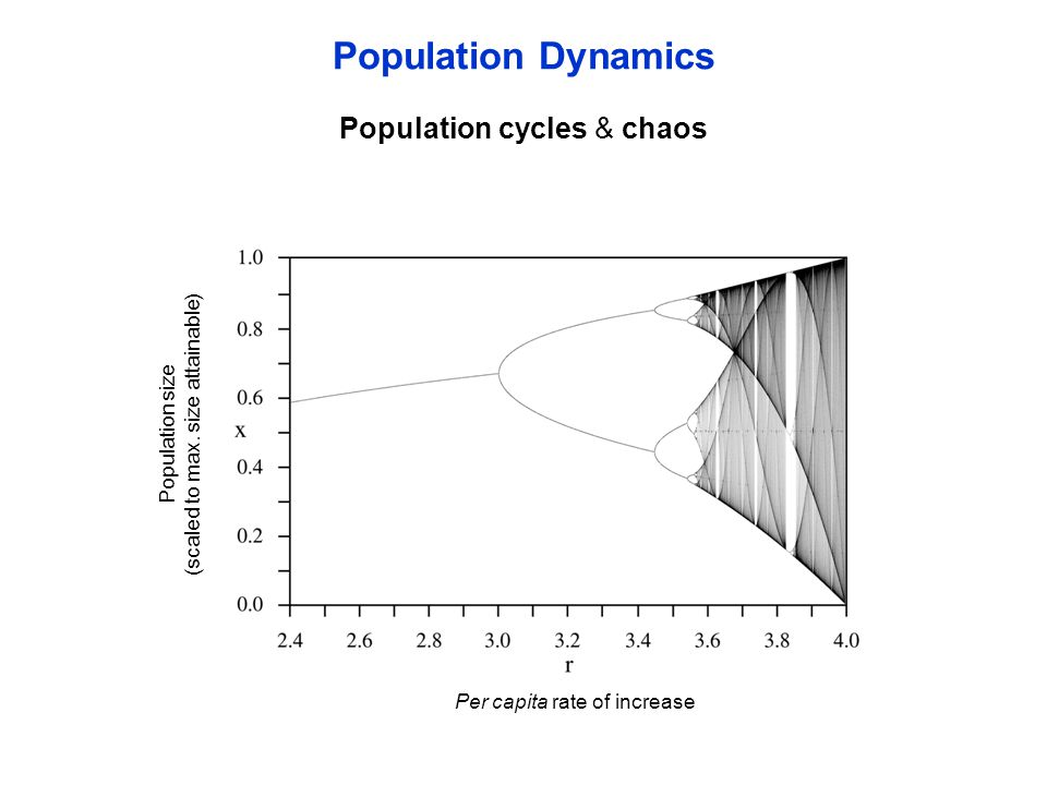 Population Dynamics Per capita rate of increase Population size (scaled to max. size attainable) Population cycles & chaos
