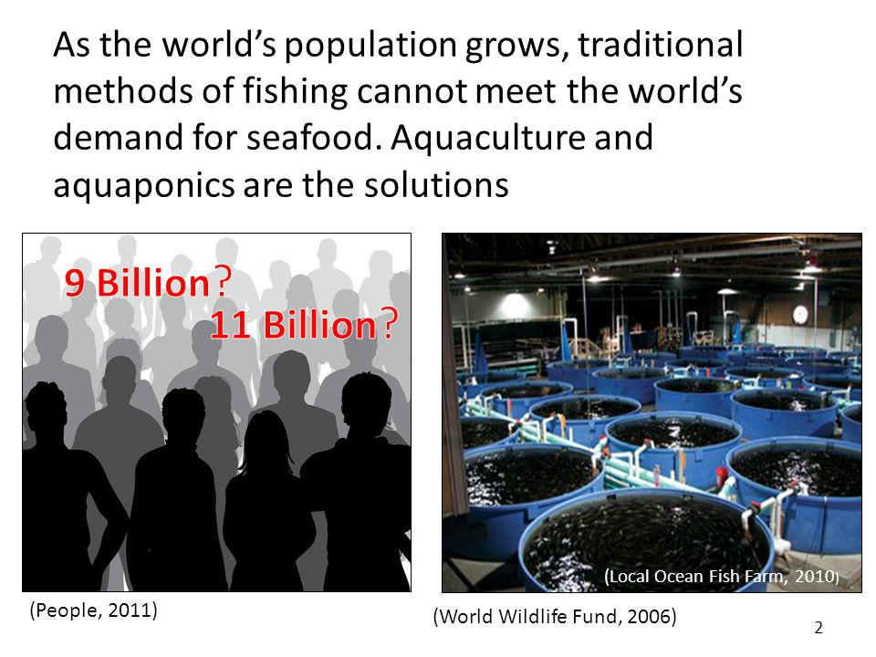 Increasing world population is driving huge increases in demand for seafood 3 (US Census, 2011)