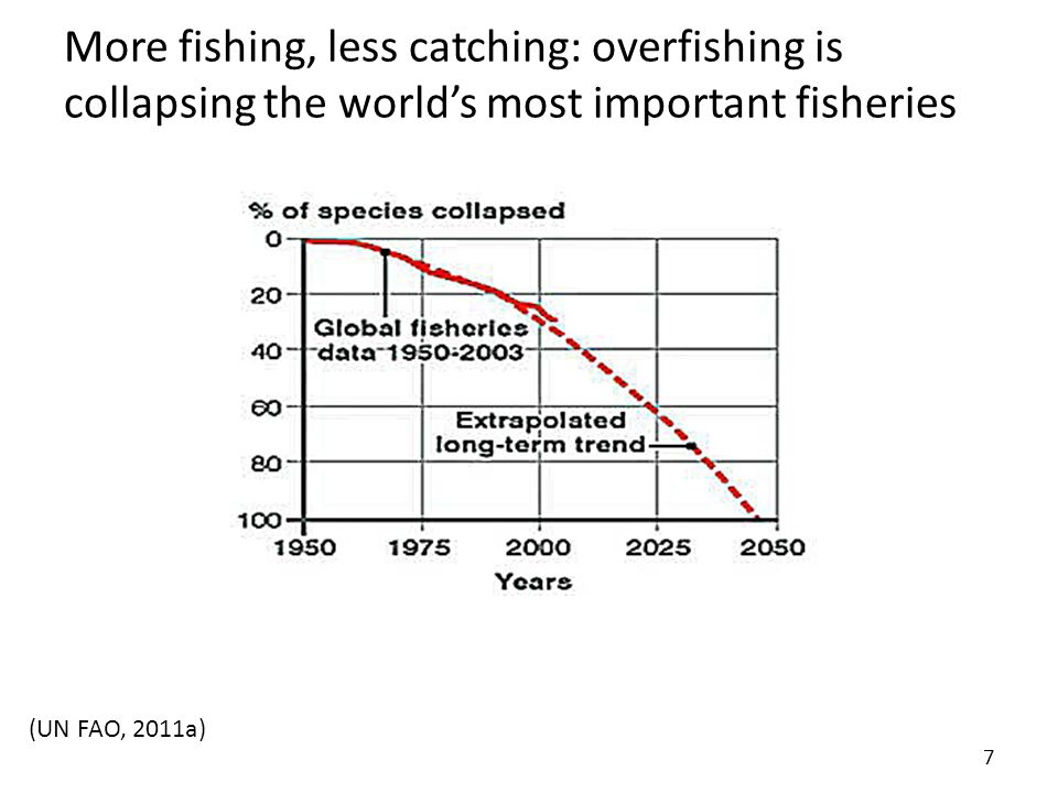 More fishing, less catching: overfishing is collapsing the world's most important fisheries 7 (UN FAO, 2011a)