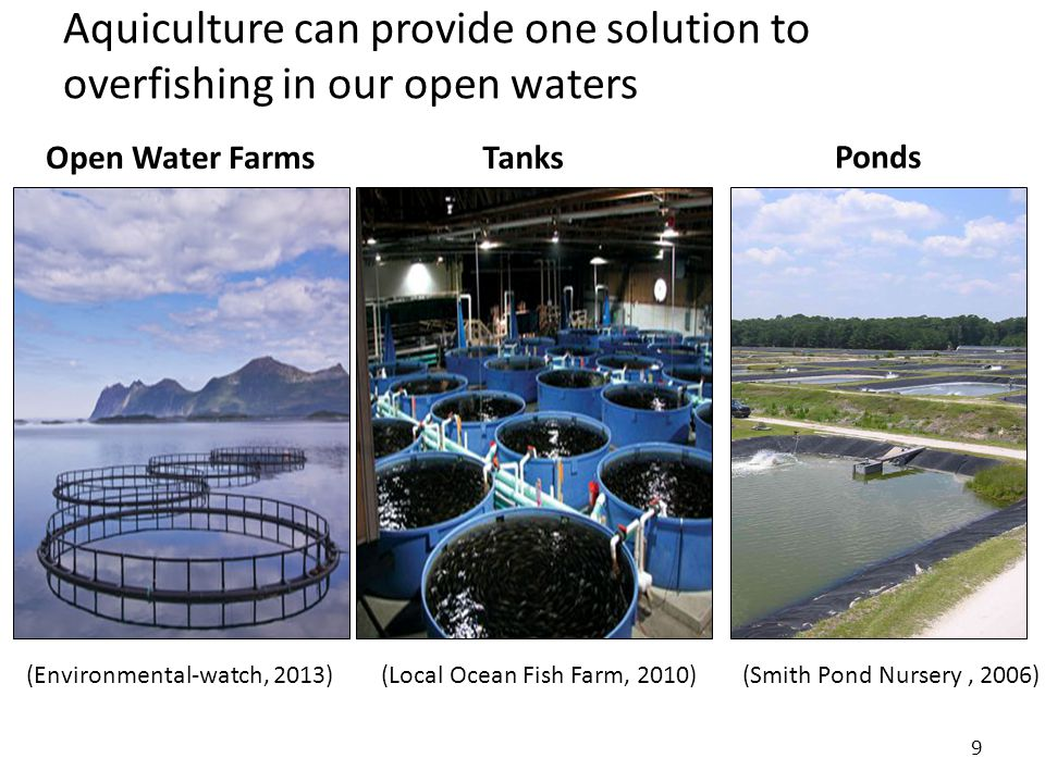 Aquiculture can provide one solution to overfishing in our open waters 9 Open Water FarmsTanks Ponds (Environmental-watch, 2013)(Smith Pond Nursery, 2006) (Local Ocean Fish Farm, 2010)