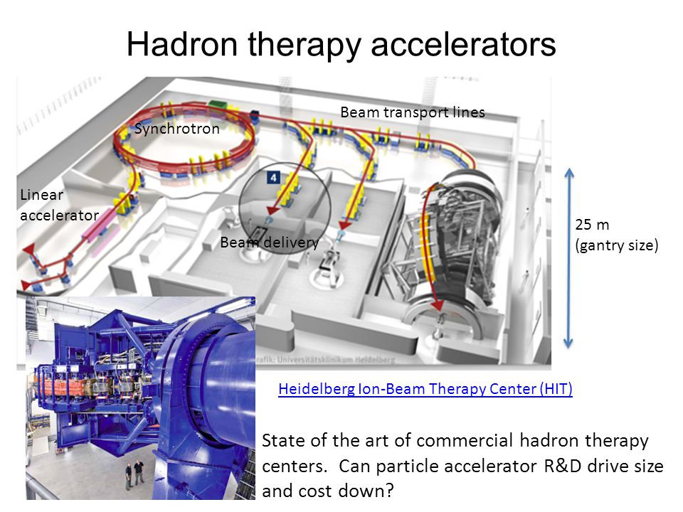 Hadron therapy accelerators Heidelberg Ion-Beam Therapy Center (HIT) State of the art of commercial hadron therapy centers.