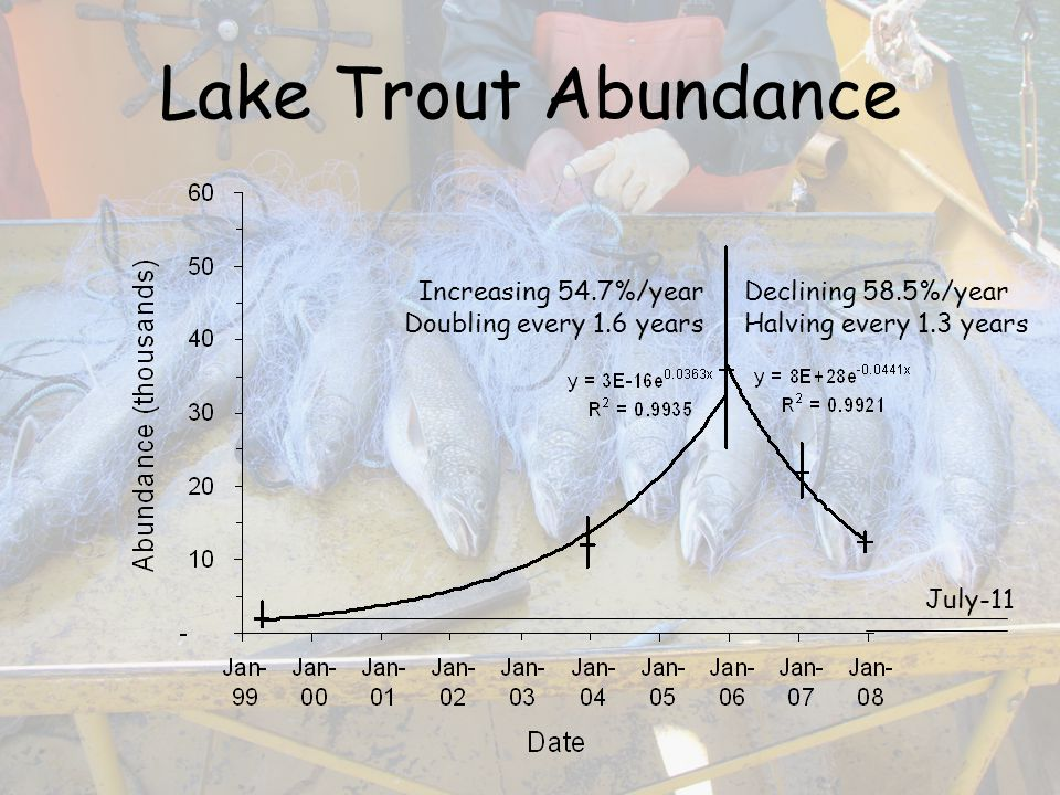 Lake Trout Abundance Increasing 54.7%/year Doubling every 1.6 years Declining 58.5%/year Halving every 1.3 years July-11