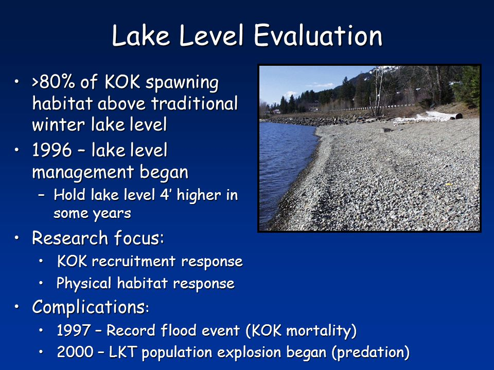 Lake Level Evaluation >80% of KOK spawning habitat above traditional winter lake level>80% of KOK spawning habitat above traditional winter lake level 1996 – lake level management began1996 – lake level management began –Hold lake level 4' higher in some years Research focus:Research focus: KOK recruitment responseKOK recruitment response Physical habitat responsePhysical habitat response Complications :Complications : 1997 – Record flood event (KOK mortality)1997 – Record flood event (KOK mortality) 2000 – LKT population explosion began (predation)2000 – LKT population explosion began (predation)