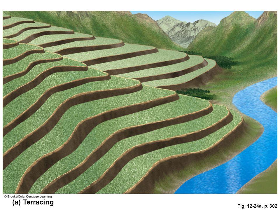 (a) Terracing