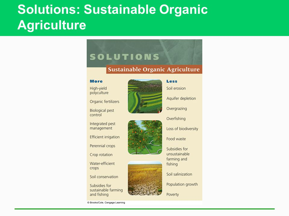 Solutions: Sustainable Organic Agriculture