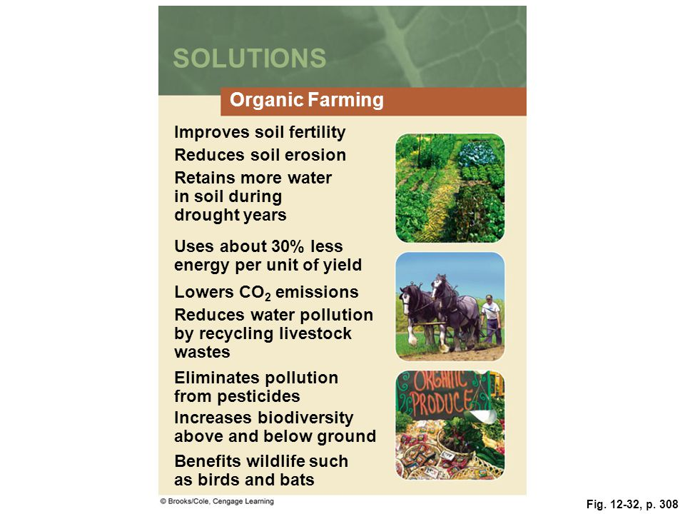 Fig. 12-32, p. 308 SOLUTIONS Organic Farming Improves soil fertility Reduces soil erosion Retains more water in soil during drought years Uses about 3