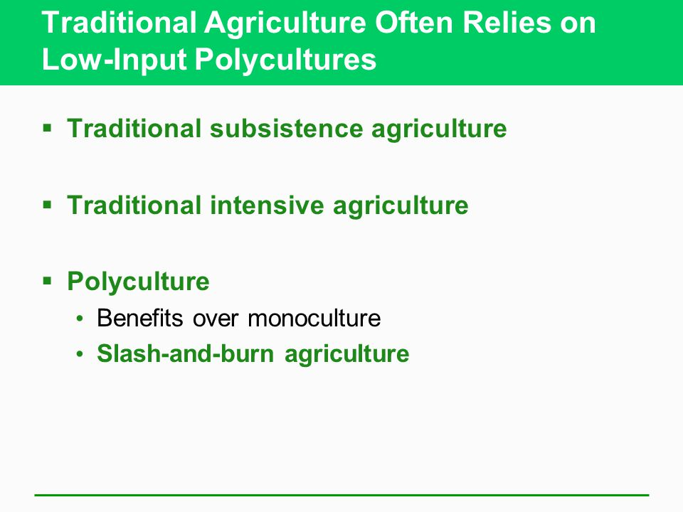 Traditional Agriculture Often Relies on Low-Input Polycultures  Traditional subsistence agriculture  Traditional intensive agriculture  Polyculture Benefits over monoculture Slash-and-burn agriculture
