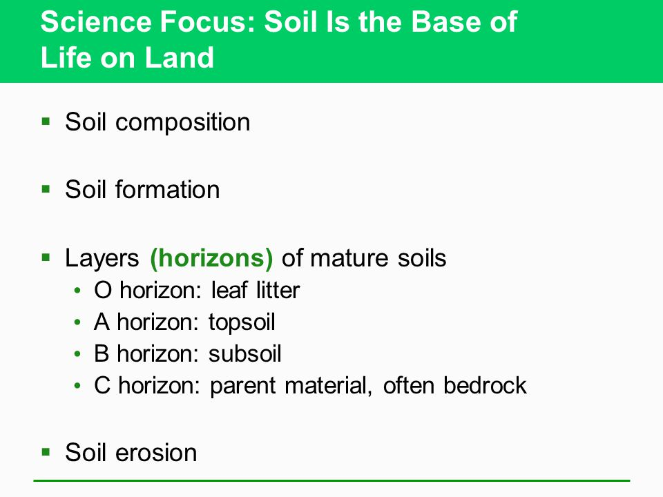 Science Focus: Soil Is the Base of Life on Land  Soil composition  Soil formation  Layers (horizons) of mature soils O horizon: leaf litter A horizon: topsoil B horizon: subsoil C horizon: parent material, often bedrock  Soil erosion
