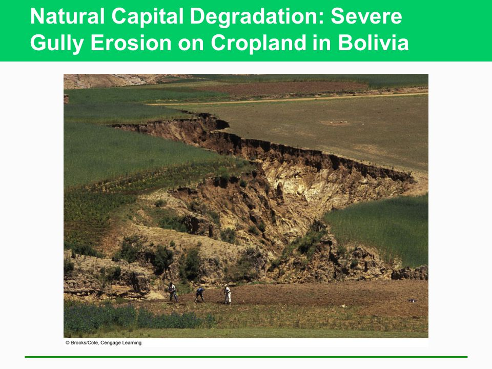 Natural Capital Degradation: Severe Gully Erosion on Cropland in Bolivia