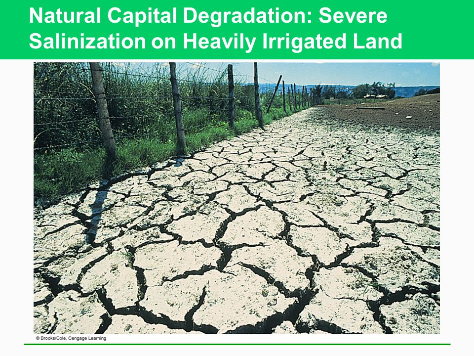 Natural Capital Degradation: Severe Salinization on Heavily Irrigated Land