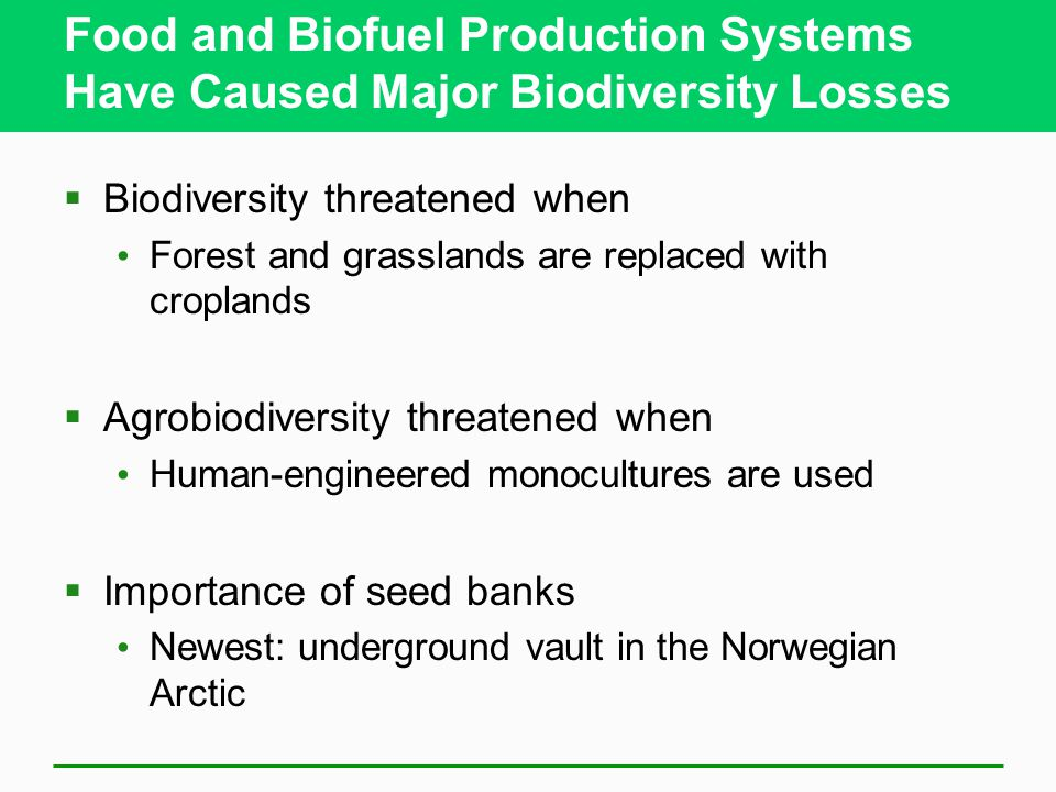 Food and Biofuel Production Systems Have Caused Major Biodiversity Losses  Biodiversity threatened when Forest and grasslands are replaced with croplands  Agrobiodiversity threatened when Human-engineered monocultures are used  Importance of seed banks Newest: underground vault in the Norwegian Arctic