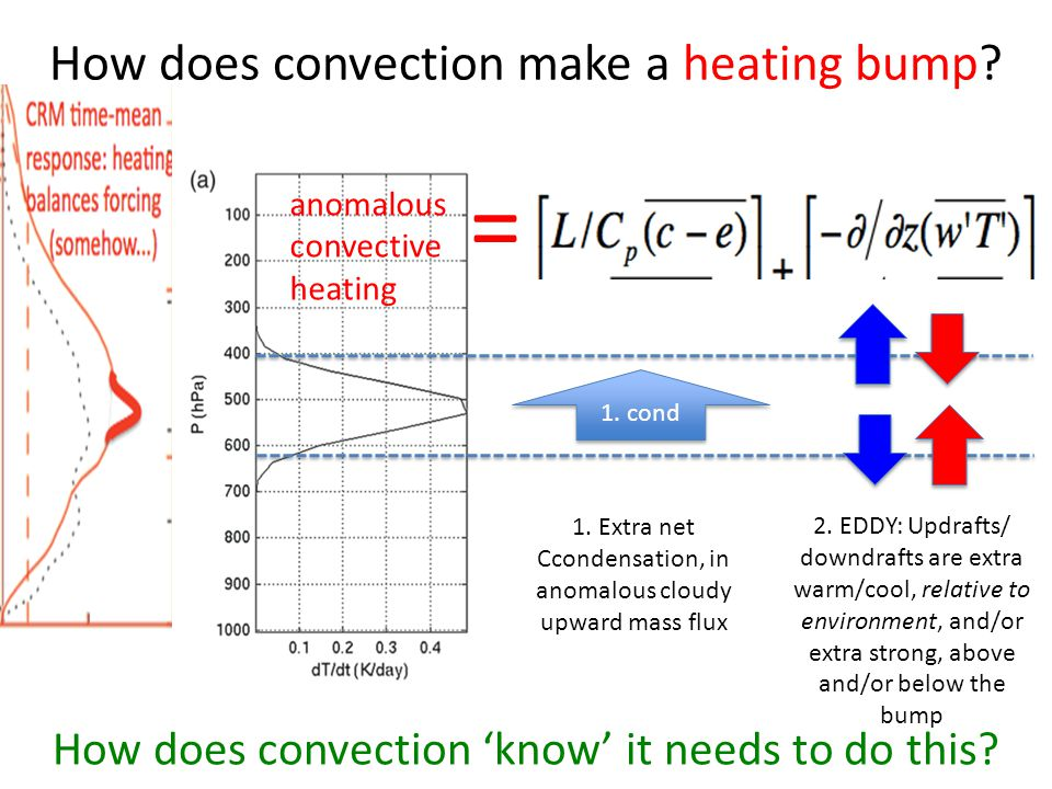 How does convection make a heating bump? anomalous convective heating 1. cond 1. Extra net Ccondensation, in anomalous cloudy upward mass flux How doe