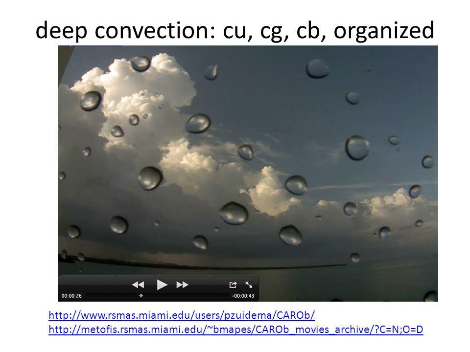 deep convection: cu, cg, cb, organized http://www.rsmas.miami.edu/users/pzuidema/CAROb/ http://metofis.rsmas.miami.edu/~bmapes/CAROb_movies_archive/ C=N;O=D