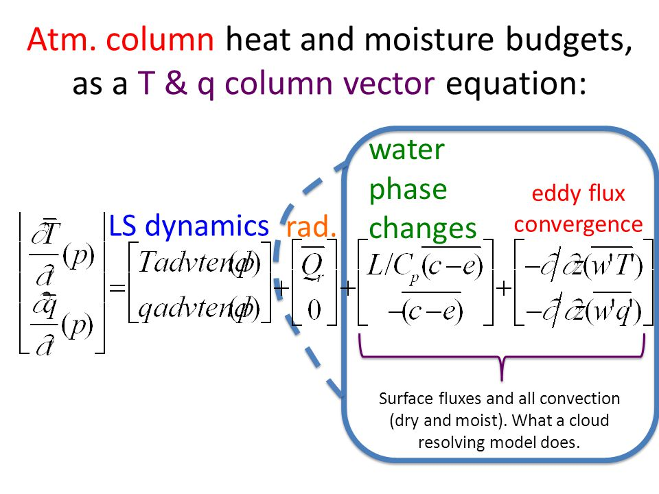 Atm. column heat and moisture budgets, as a T & q column vector equation: LS dynamics rad.