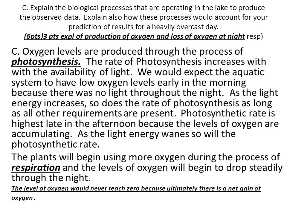 C. Explain the biological processes that are operating in the lake to produce the observed data. Explain also how these processes would account for yo