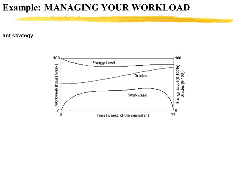 Example: MANAGING YOUR WORKLOAD ant strategy