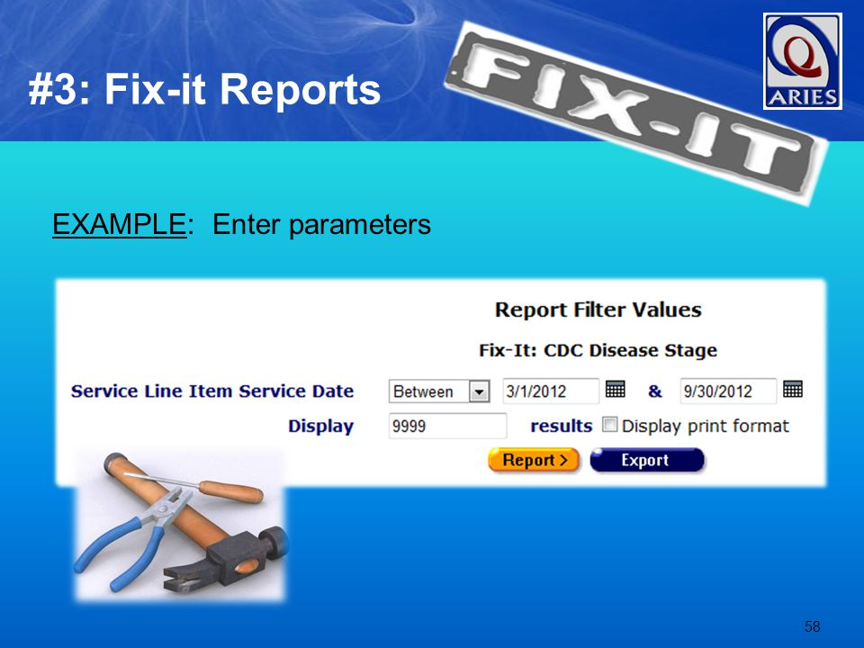 EXAMPLE: Enter parameters 58 #3: Fix-it Reports