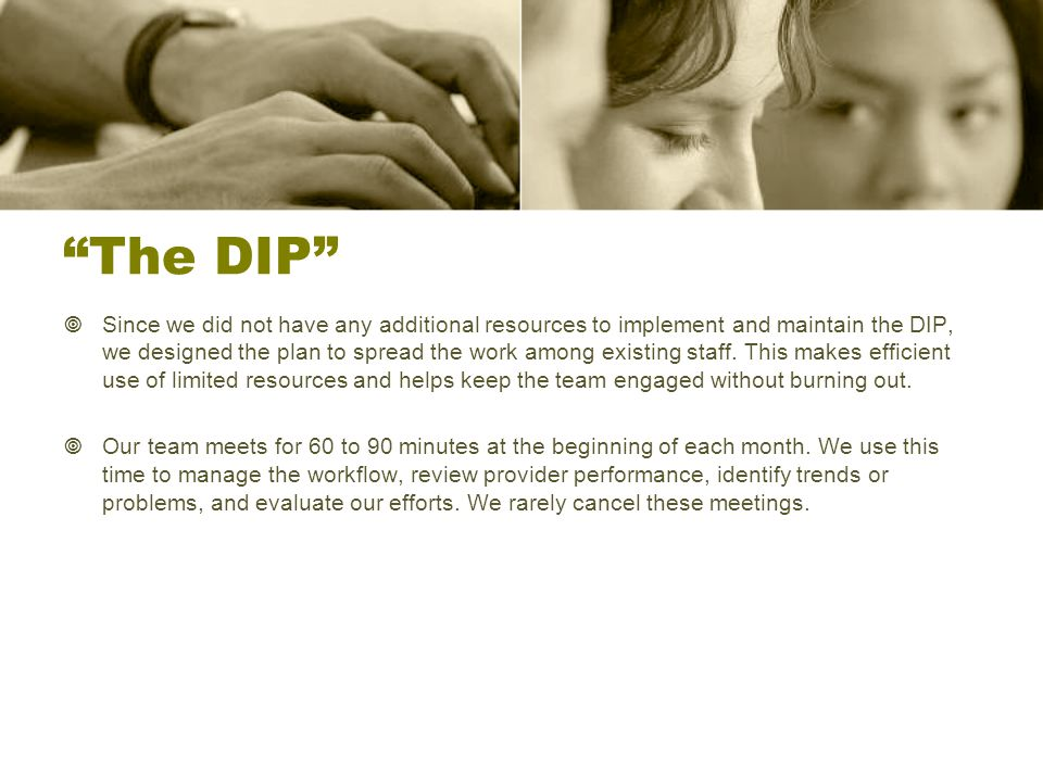 The DIP  Since we did not have any additional resources to implement and maintain the DIP, we designed the plan to spread the work among existing staff.