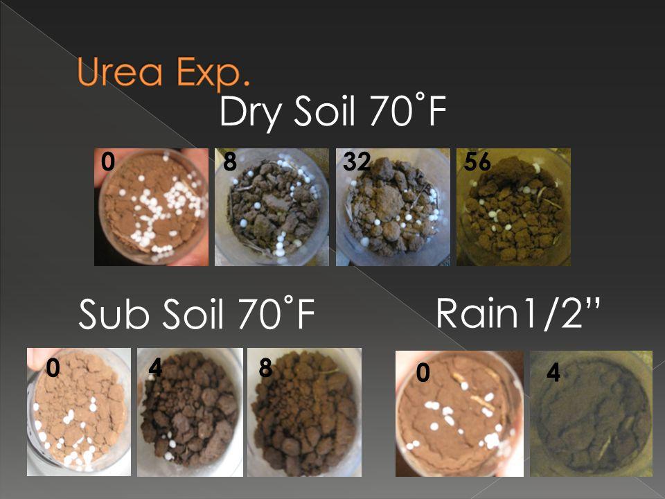 Rain1/2 04 Sub Soil 70˚F 048 Dry Soil 70˚F 056832