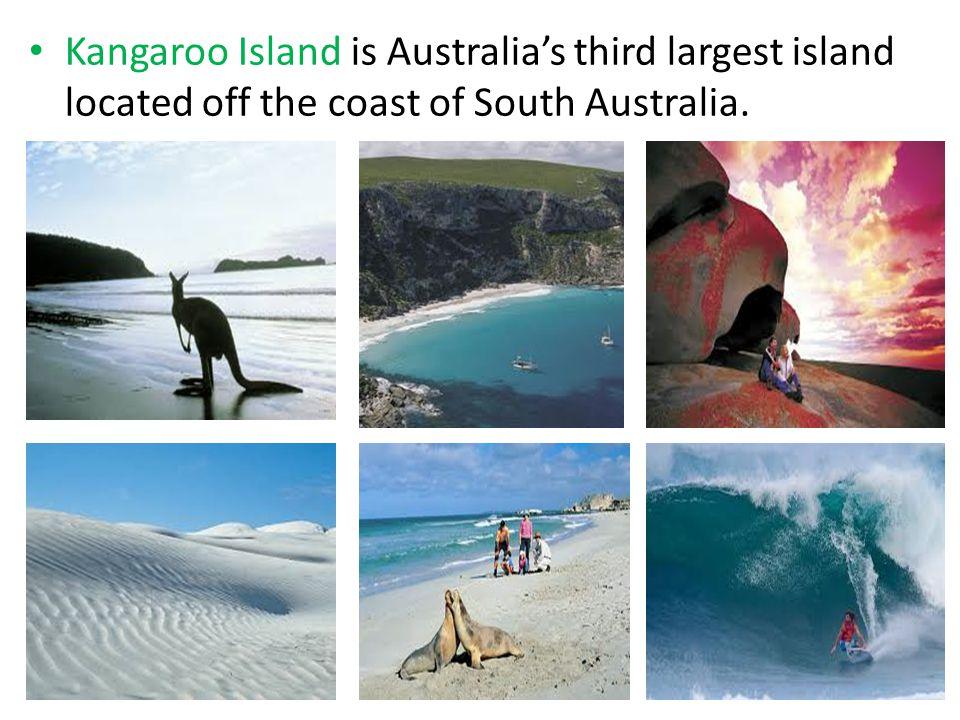 Kangaroo Island is Australia's third largest island located off the coast of South Australia.