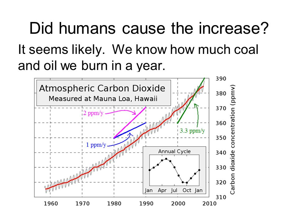 Did humans cause the increase It seems likely. We know how much coal and oil we burn in a year.