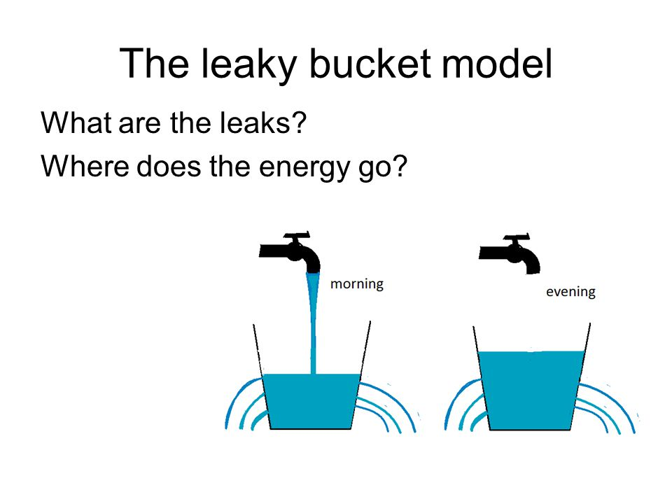 The leaky bucket model What are the leaks? Where does the energy go?