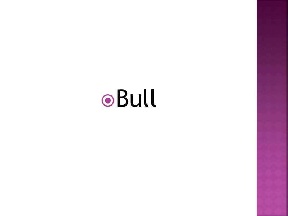  Bull