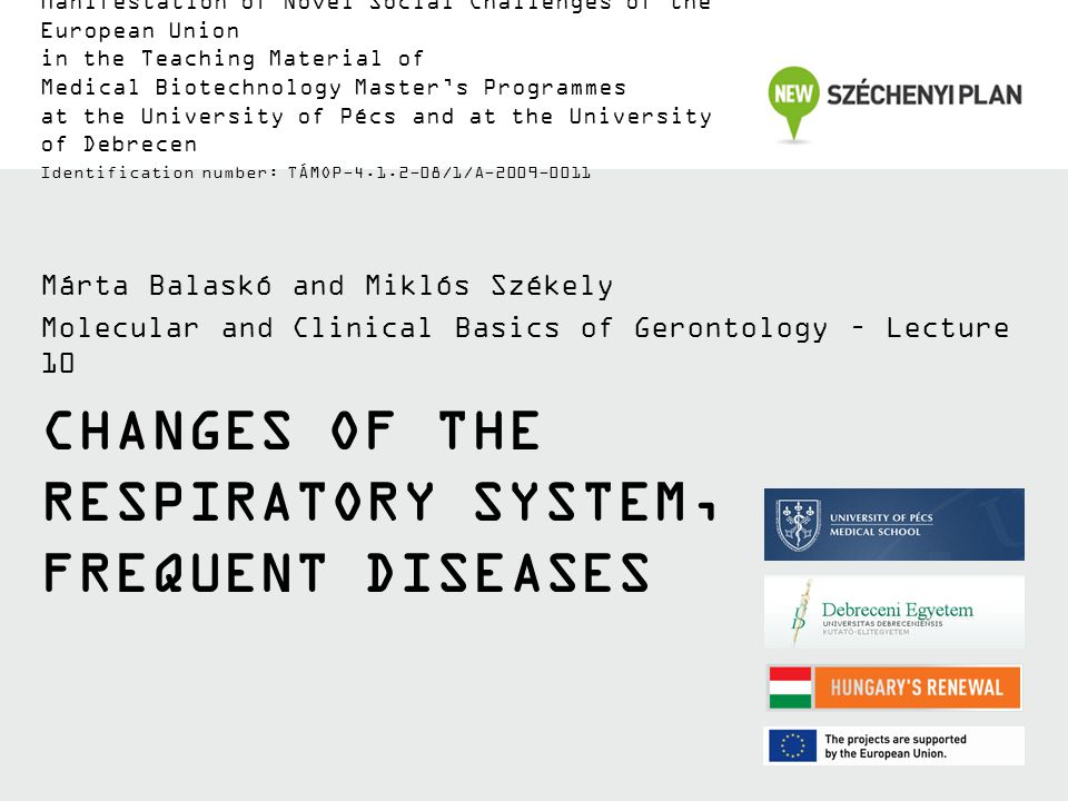 CHANGES OF THE RESPIRATORY SYSTEM, FREQUENT DISEASES Márta Balaskó and Miklós Székely Molecular and Clinical Basics of Gerontology – Lecture 10 Manifestation of Novel Social Challenges of the European Union in the Teaching Material of Medical Biotechnology Master's Programmes at the University of Pécs and at the University of Debrecen Identification number: TÁMOP-4.1.2-08/1/A-2009-0011