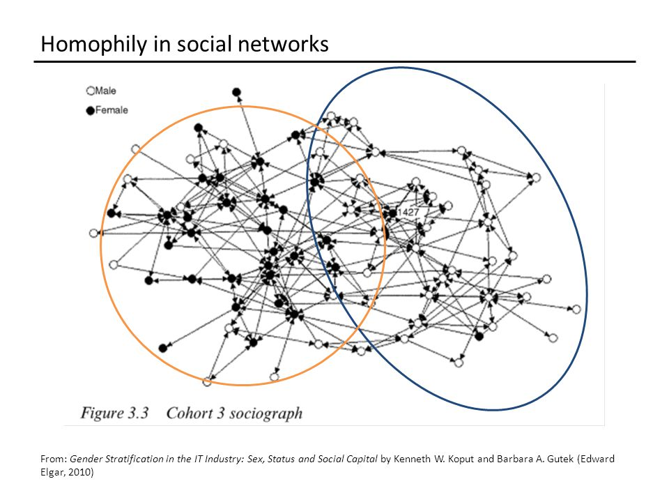 Homophily in social networks From: Gender Stratification in the IT Industry: Sex, Status and Social Capital by Kenneth W.