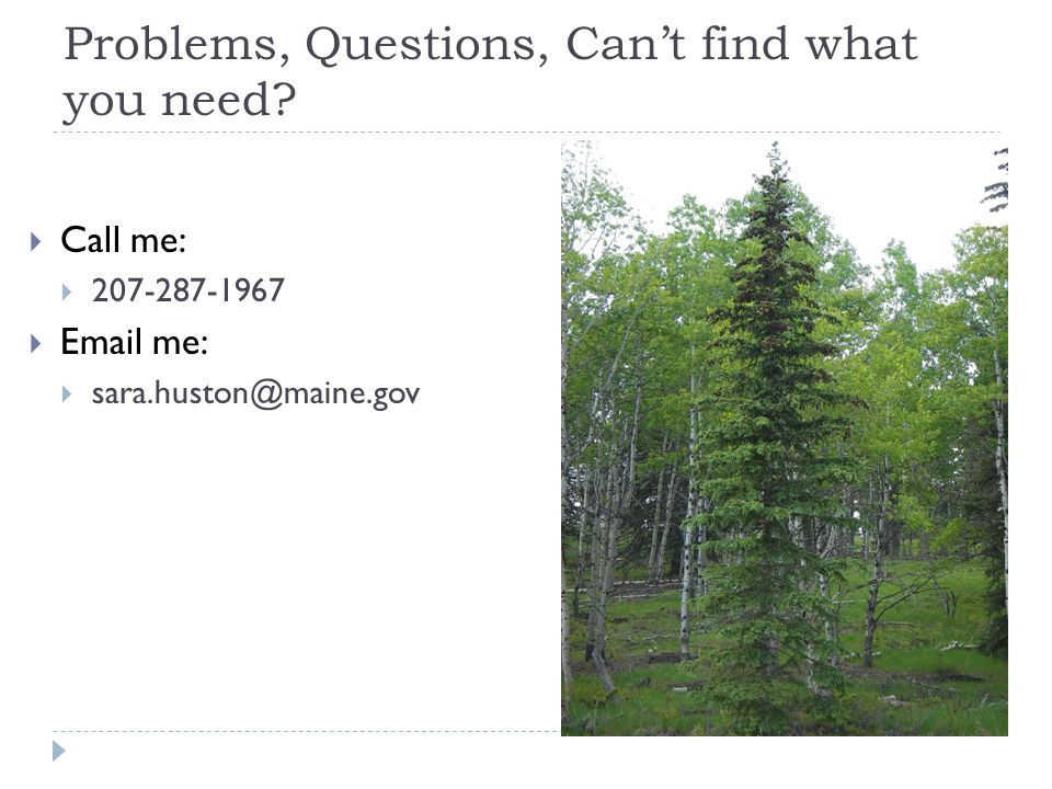 Problems, Questions, Can't find what you need?  Call me:  207-287-1967  Email me:  sara.huston@maine.gov