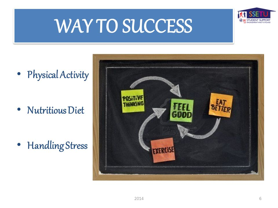 Physical Activity Nutritious Diet Handling Stress 20146
