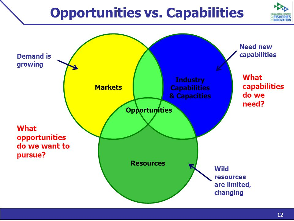 12 Opportunities vs. Capabilities Demand is growing Wild resources are limited, changing Need new capabilities What capabilities do we need? What oppo
