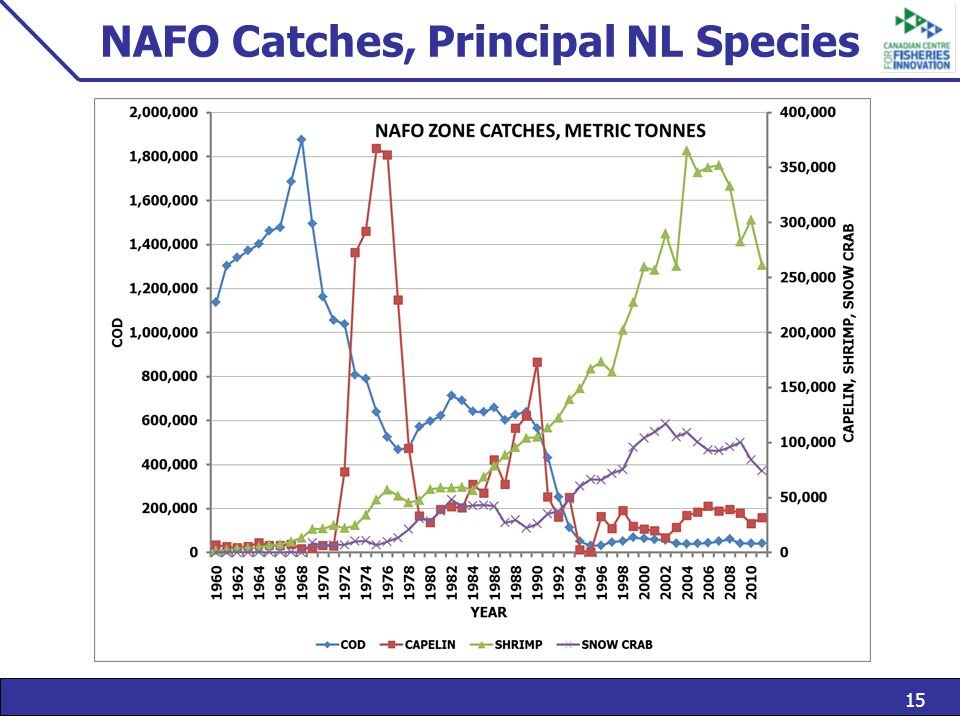 15 NAFO Catches, Principal NL Species