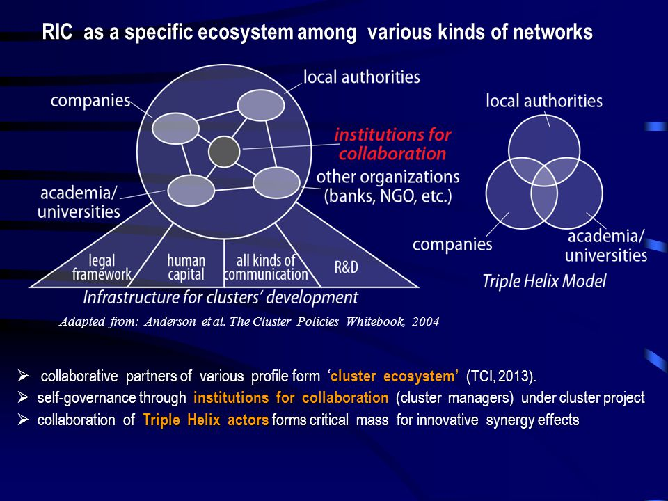  collaborative partners of various profile form ' cluster ecosystem' ( TCI, 2013).  self-governance through institutions for collaboration (cluster