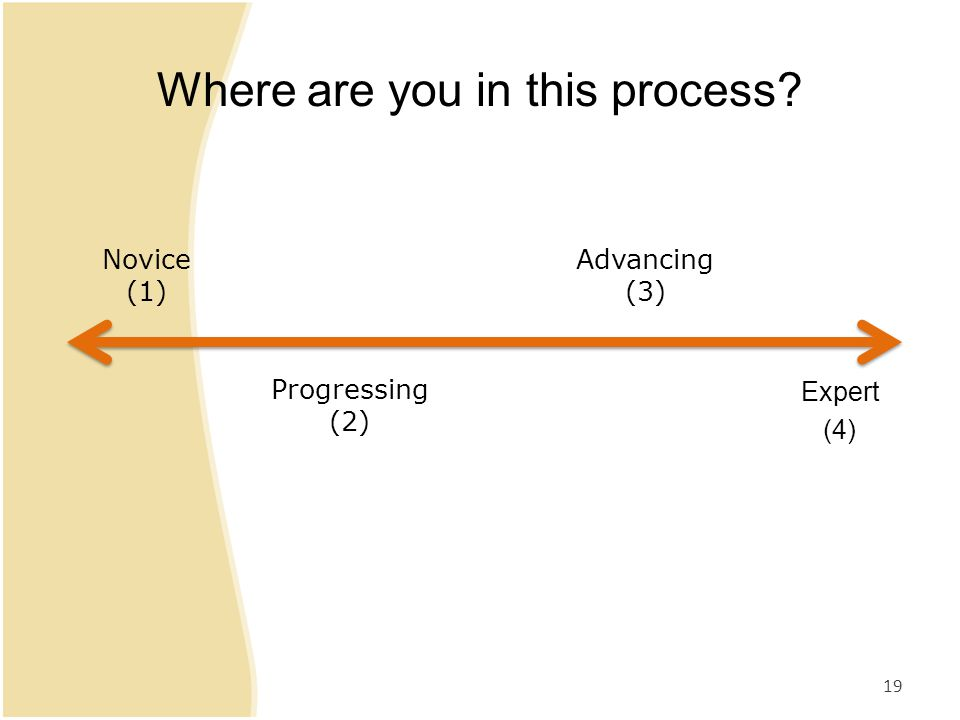 Where are you in this process 19 Novice (1) Expert (4) Progressing (2) Advancing (3)