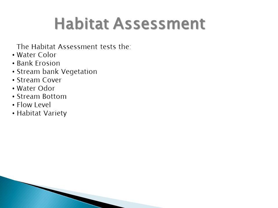 Habitat Assessment The Habitat Assessment tests the: Water Color Bank Erosion Stream bank Vegetation Stream Cover Water Odor Stream Bottom Flow Level Habitat Variety