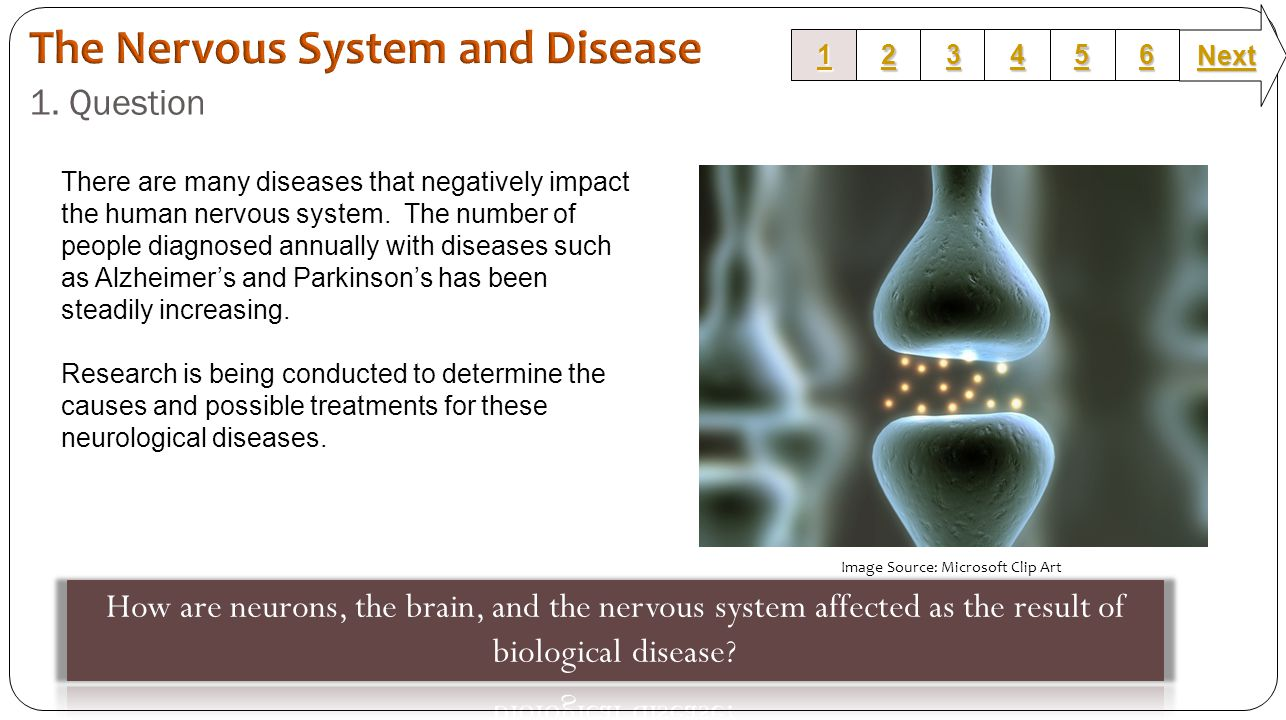 1. Question 1111 2222 3333 6666 5555 4444 Next Image Source: Microsoft Clip Art There are many diseases that negatively impact the human nervous syste